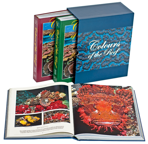 colours of the reef book roger steene