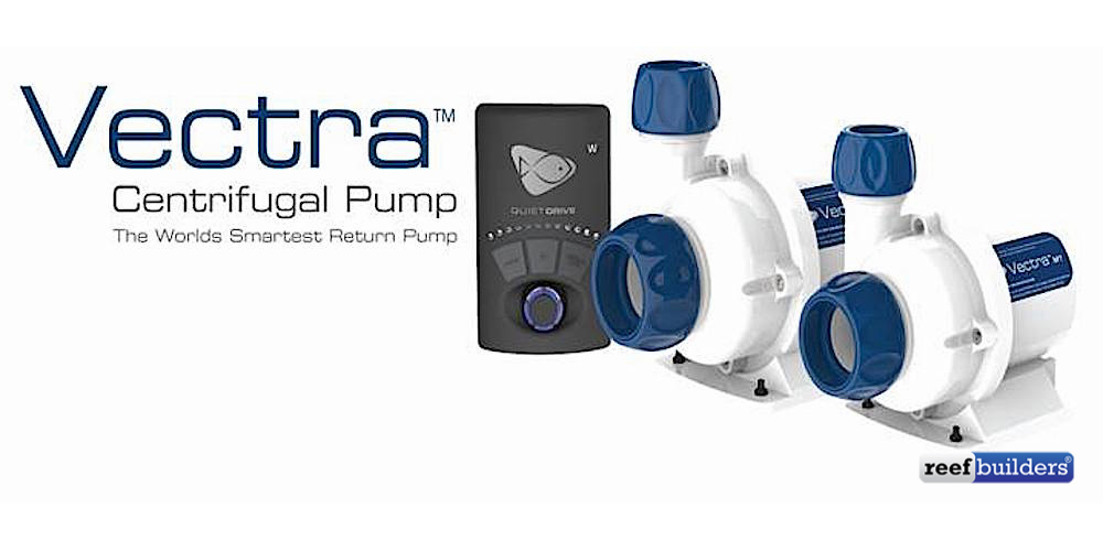 vectra m1 l1 ecotech dc pump