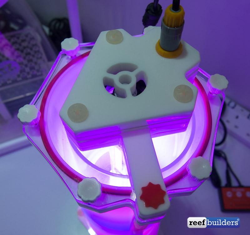 skimz-macroalgae-reactor-filter-3