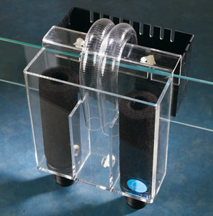A typical, traditional overflow boxes with the tell-tale U-tubes siphoning water over the edge of the aquarium wall