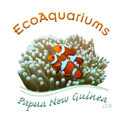EcoAquariums PNG LTD Logo