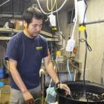Jawfish breeder hopes to inspire interest in ocean