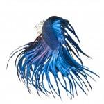 150d0290-b060-11e3-bebd-5f46bb13bc40_12_CATERS_Beautiful_Siamese_Fighting_Fish_15