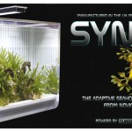 SYNGNA BANNER 1024