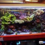 aquatic warehouse-3