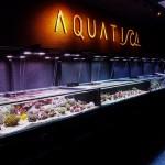 aquatica-1