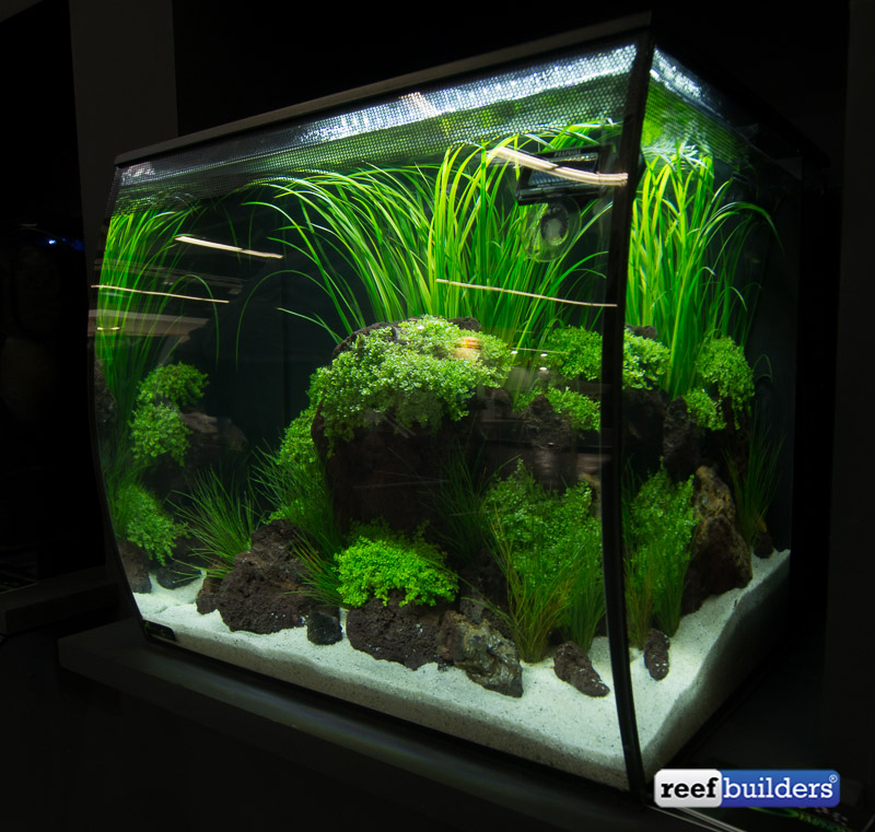 Fluval Flex Aquarium Reef Builders