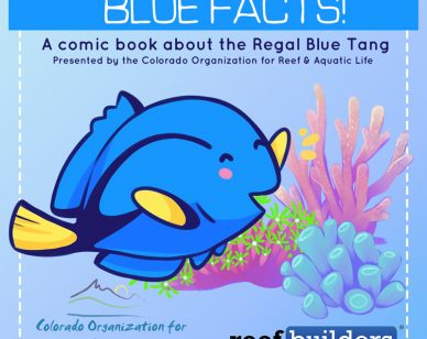 blue-facts-final-coral