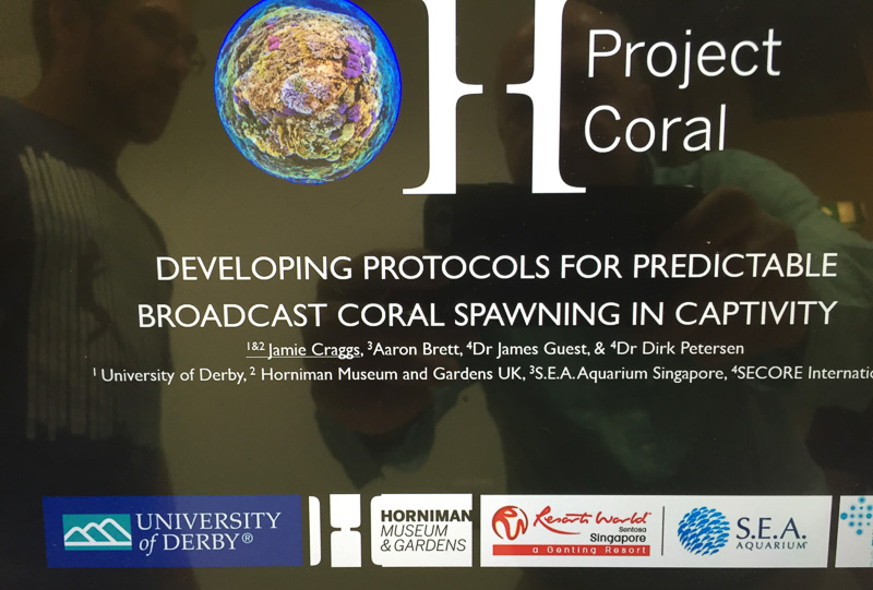 The poster showing exactly what Project Coral is