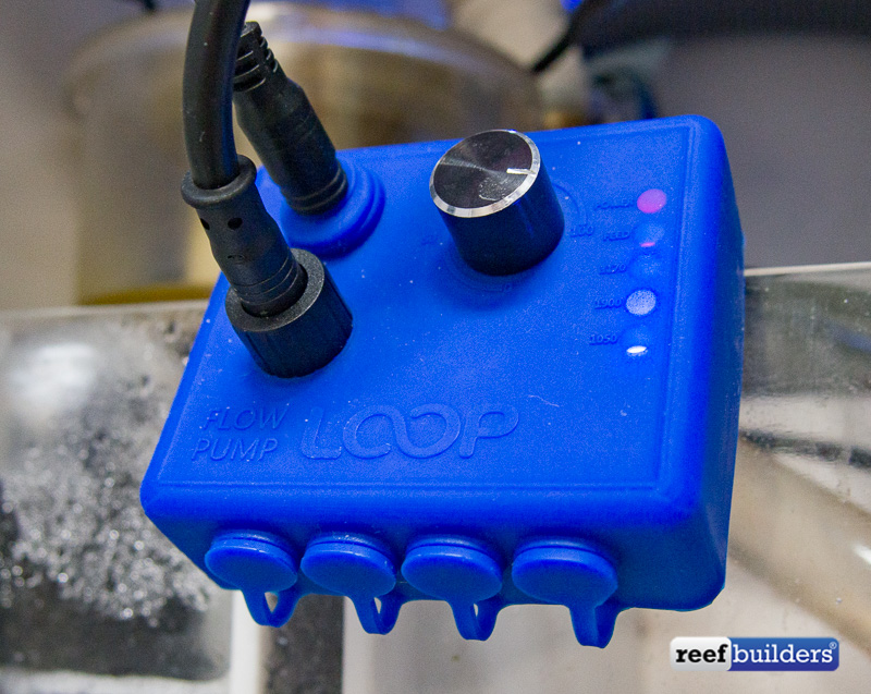 eflux-dc-pump-current-usa-2