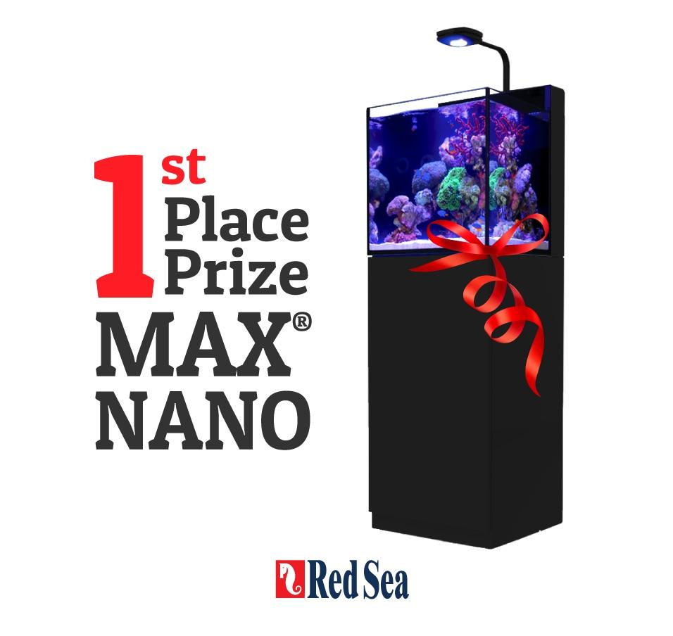red-sea-max-nano-1st
