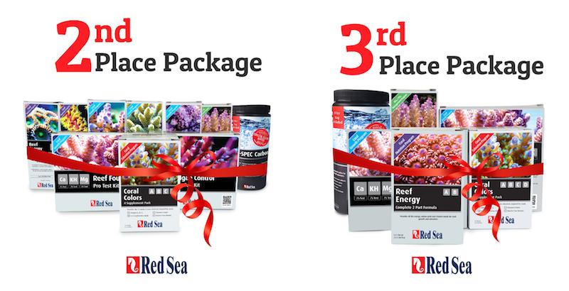 red-sea-max-nano-prizes