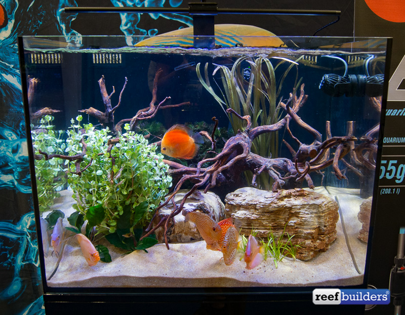 c-view-aquariums-cobat-aquatics-3