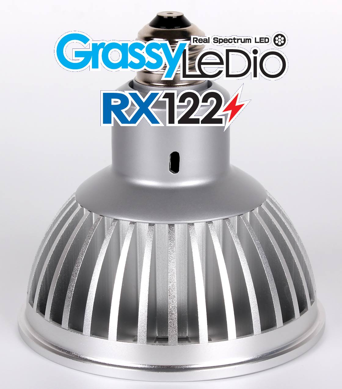 grassy-ledio-rx122