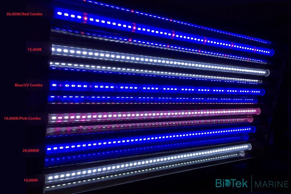 b5ho-led-t5-biotek-marine