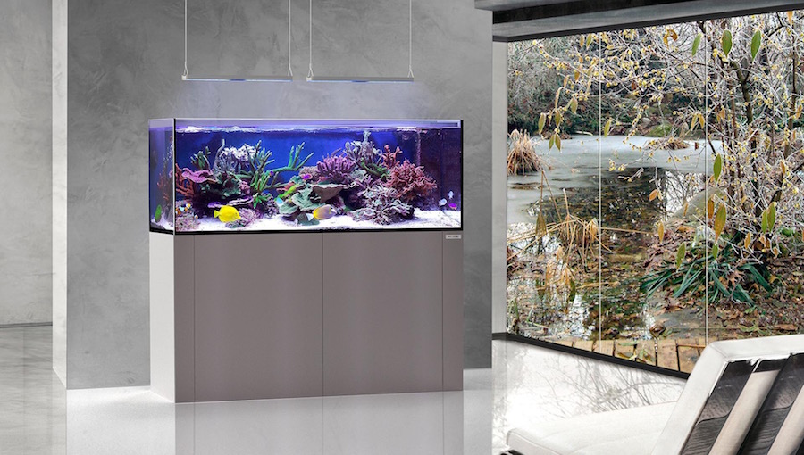 An example of how Elos designs their tanks to not only be functional but also to add to a home's decor