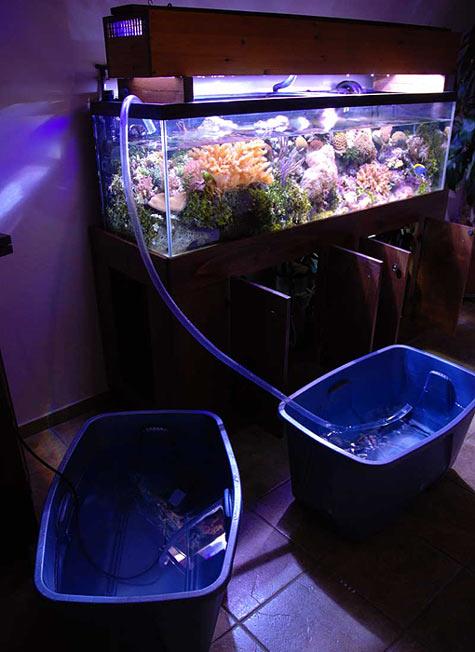 aquarium water change frequency