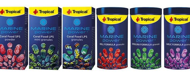 Tropical Marine Power coral and fish food