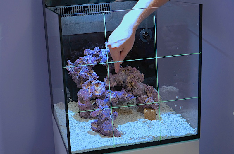 How To Setup A Mini Reef Aquarium Part 2 Aquascaping Live Rock Leveling Reef Builders The Reef And Saltwater Aquarium Blog