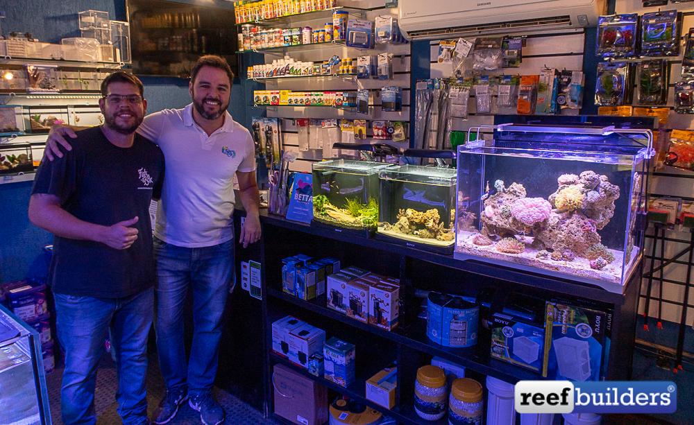 Fish in a box store brasília