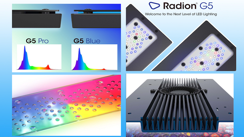 Exclusive Video with Radion G5 Pro & Blue Designer Justin Lawyer | Reef Builders | The Reef and Saltwater Aquarium Blog