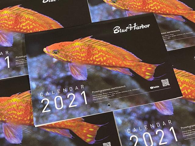 Images of Reef Calendar 2021