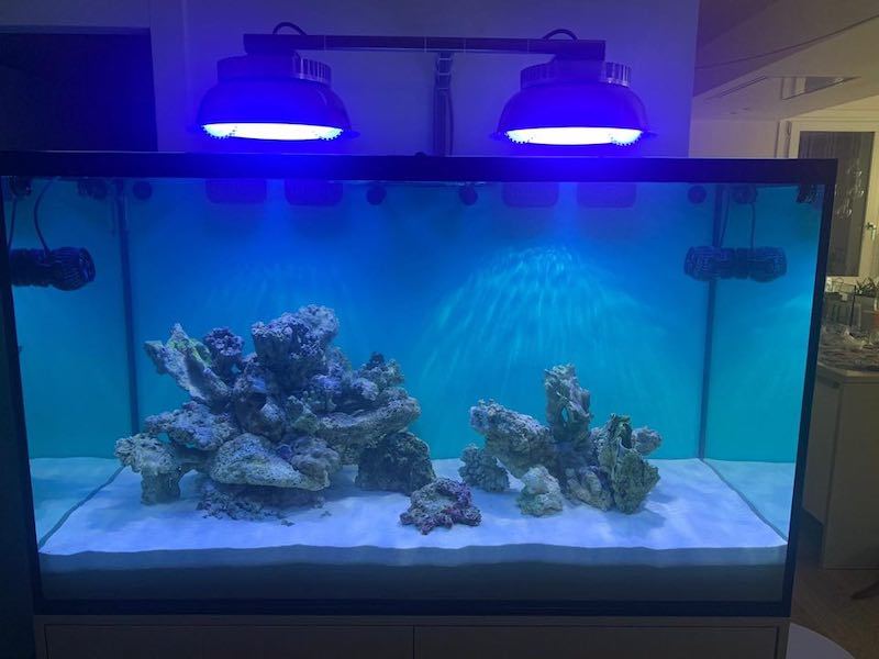 IL-lumination-induction-led-light-aquari