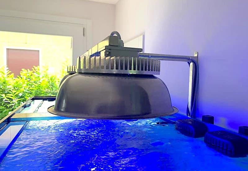 IL-lumination-induction-led-light.jpeg