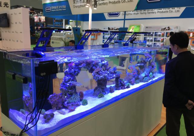 Large display aquarium at CIPS