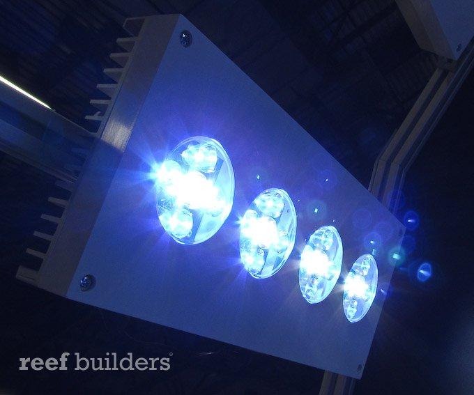 AI Phoenix LED
