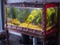 vintage-fishbowl-zoomed-14