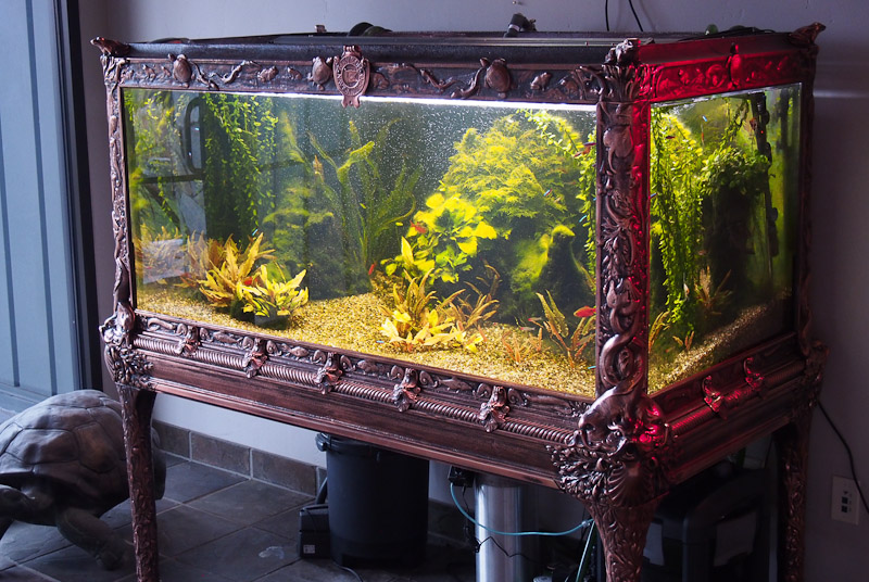 Zoo Med is the guardian of an amazing aquarium museum ... 10 Gallon Fish Tank Stand