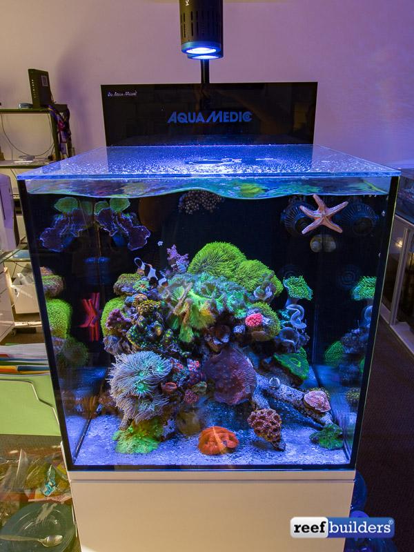 aquamedic-cubicus-reef-tank-2