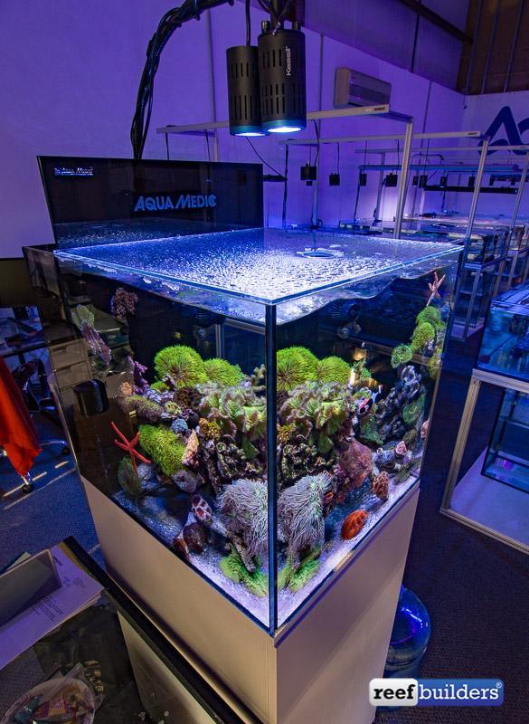aquamedic-cubicus-reef-tank-3