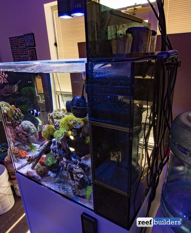 aquamedic-cubicus-reef-tank-4