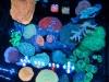aivega-led-aquarium-2