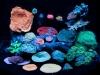 aivega-led-aquarium-3