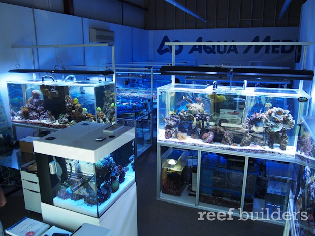 Aqua Medic Live is set up for success - Reef Builders | The Reef and ...