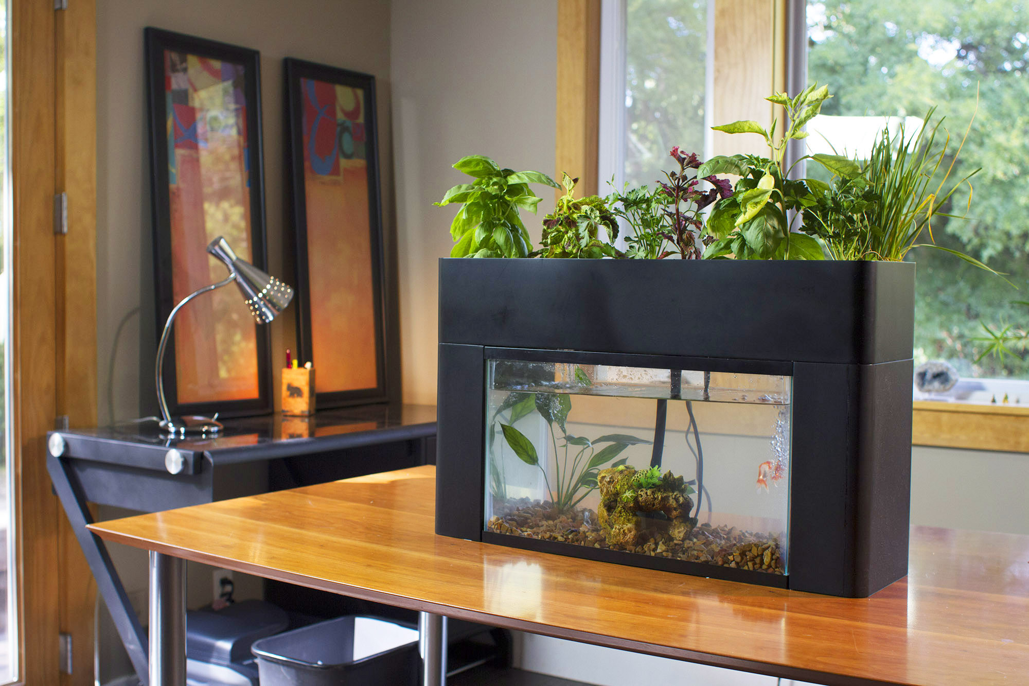 Desk-Garden