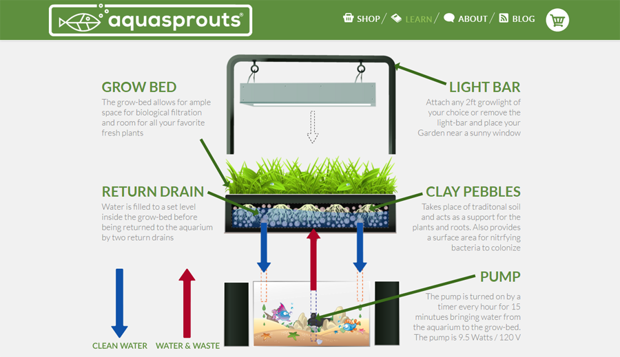 Learn AquaSprouts