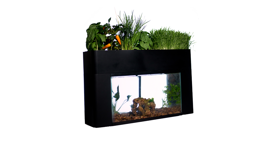 aquasprouts-garden