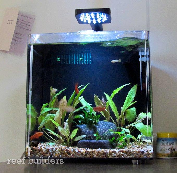 aqueon desktop aquarium