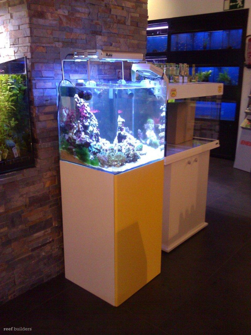 prototype blau lumina led aquarium light spotted reef builders the reef and marine aquarium blog. Black Bedroom Furniture Sets. Home Design Ideas