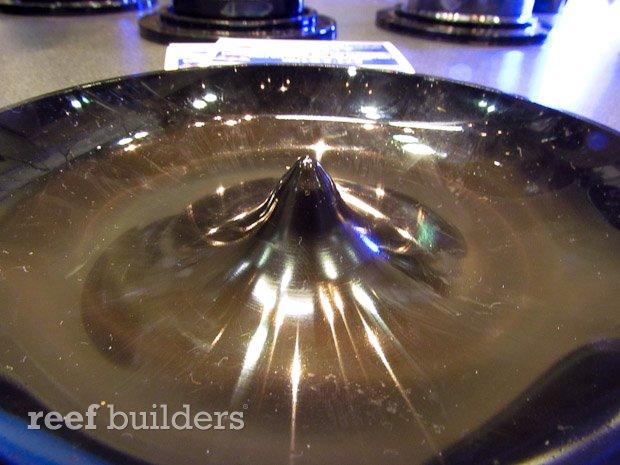 triton aquatics reactor