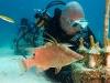 fl-coral-nursery-photo-080710j