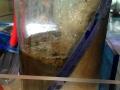 deepwater-aquatics-hob-hang-on-back-skimmer-4