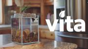 Vita1