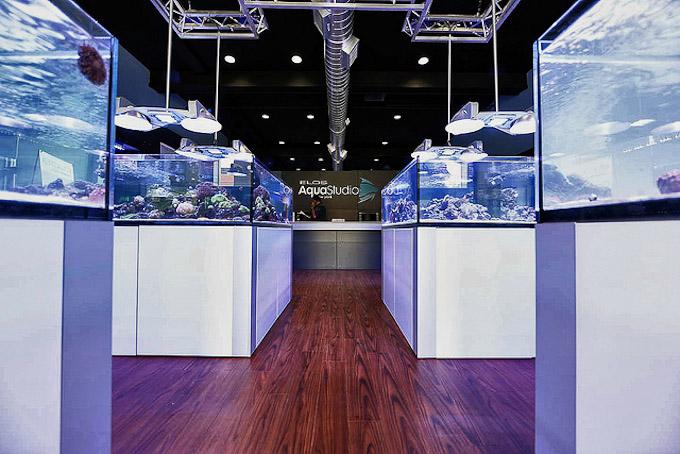 Elos Aquastudio New York Grand Opening Reveals A Gorgeous Classy Reef Aquarium Store Reef