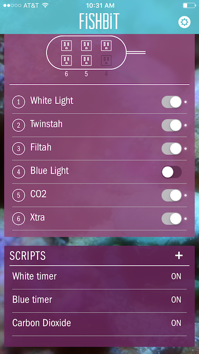 fishbit-application-4