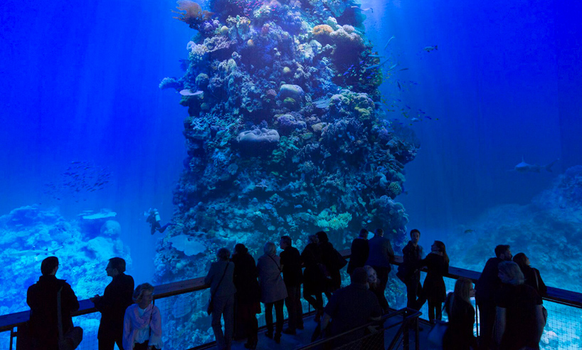great-barrier-reef-panometer-leipzig-designboom-02